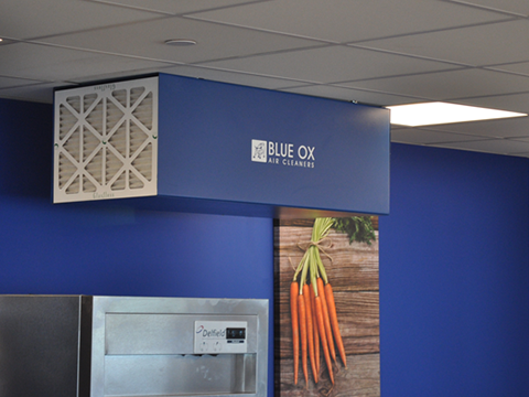 Blue Ox Air Cleaner unit installed to remove commercial kitchen odors and circulate clean air.